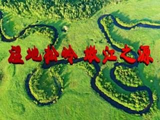 湿地松岭 嫩江之源