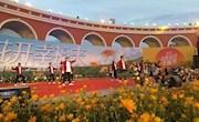 万余游客云集中国北疆共赴金莲花之约