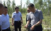 林管局副局长刘志深入图强林业局调研