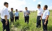为加强森林资源保护 夯实经济发展基础林管局副局长刘志深入阿木尔局调研